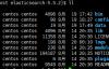 ELK之Elasticsearch学习(一)centOS安装启动ES